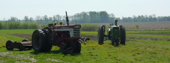 P1110530_crop